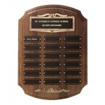 Bronze Framed Perpetual Plaques Achievement Awards