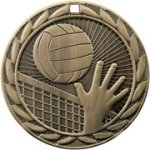 Volleyball FE Iron Medal FE Iron Medal Awards