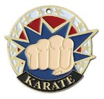USA Sport Karate Medals Karate Trophy Awards